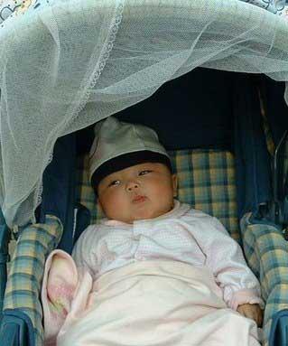 外出時,別用尼龍紗遮住孩子的臉